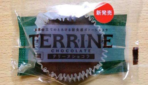 【セブンイレブン】テリーヌショコラ感想!濃厚で美味しいビターなチョコ!